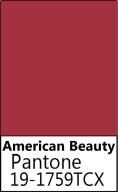 American Beauty.jpg